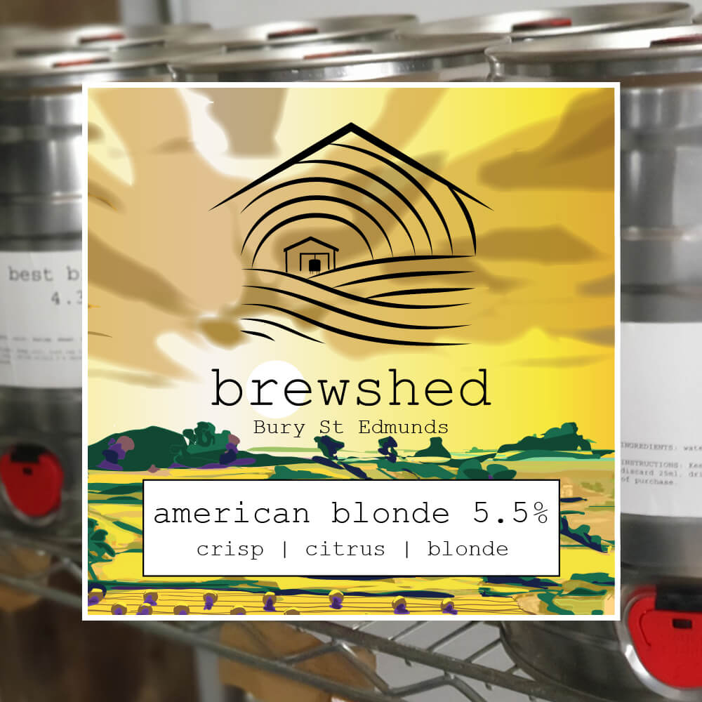 American Blonde 5.5% Mini Keg 5 Litre